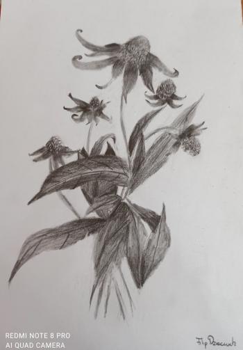 Filip Dzieciuch - bukiet kwiatów