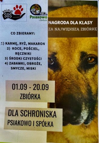plakat na temat zbiórki dla schroniska